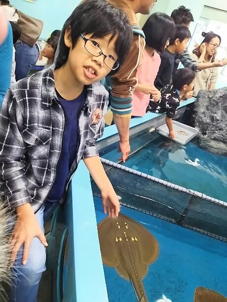 竹島&竹島水族館