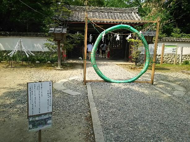 花しょうぶ in 賀茂神社