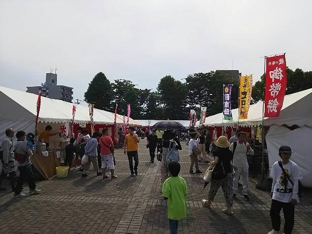 赤塚山しょうぶ園&豊川おいでん祭