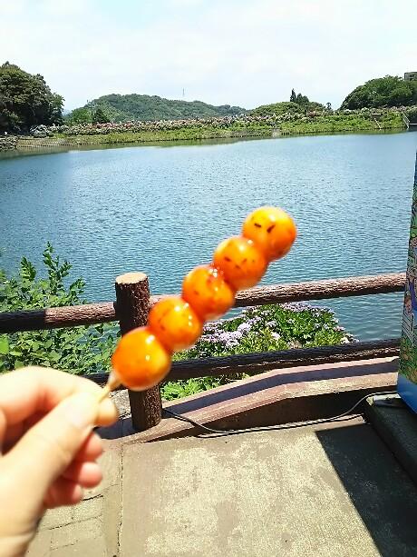 さわやかウォーキング in 三河塩津